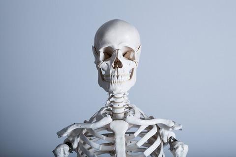 たるみの原因は骨の老化!?老化は骨から始まっている【アンチエイジング】